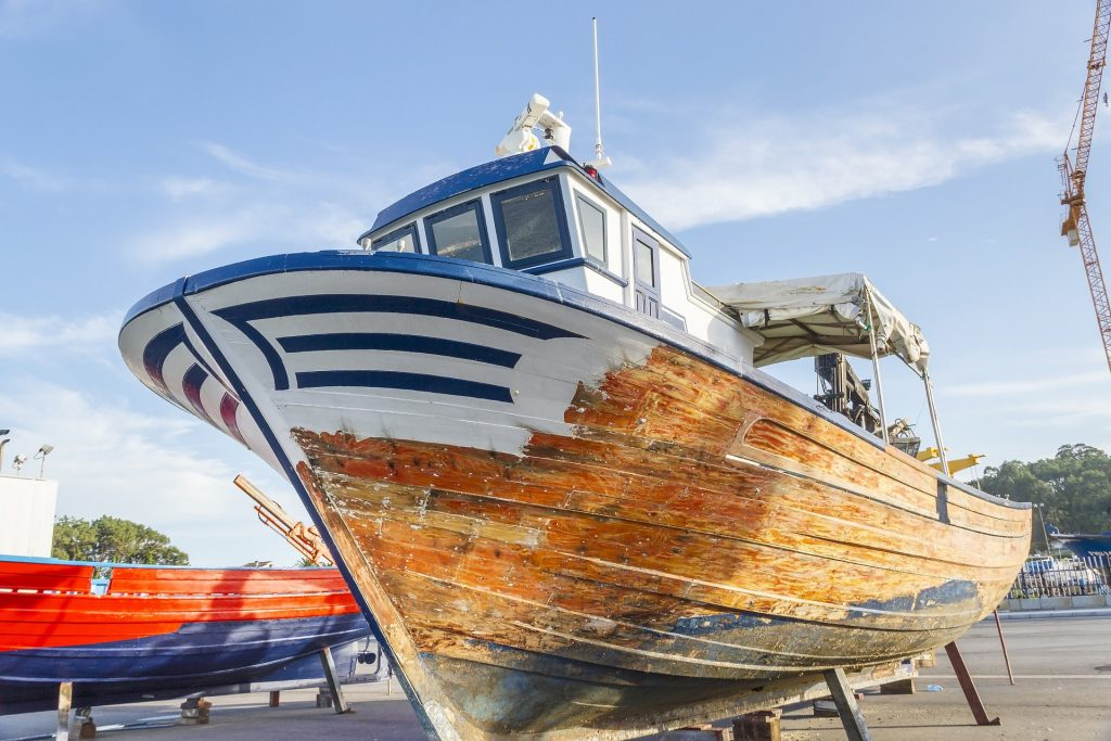 Palmetto Boat