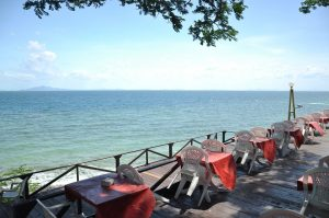Where to Dine on the Water Near Palmetto Riviera Dunes Marina Blog