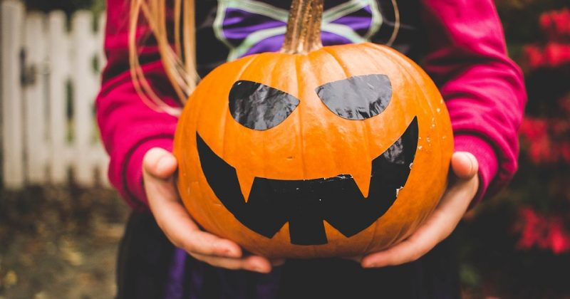 6 Family-Friendly Halloween Activities Near Bradenton