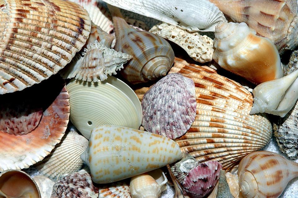 3 Ideas for a Budget-Friendly Vacation Near Our Marina Riviera Dunes Marina