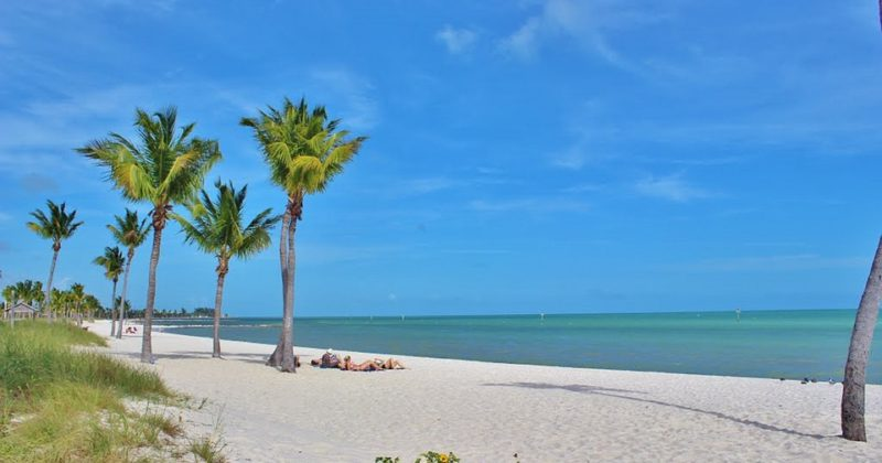 Get to Know the Islands and Beaches of Sarasota