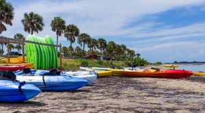 Summer Bucket List Part 2: Must-Dos in Bradenton Riviera Dunes Marina Blog