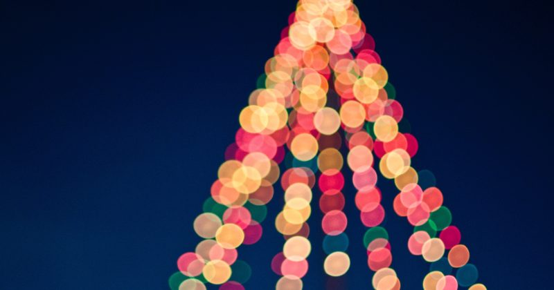 Have a Holly Jolly Christmas in Florida: Festive Fort Myers Events